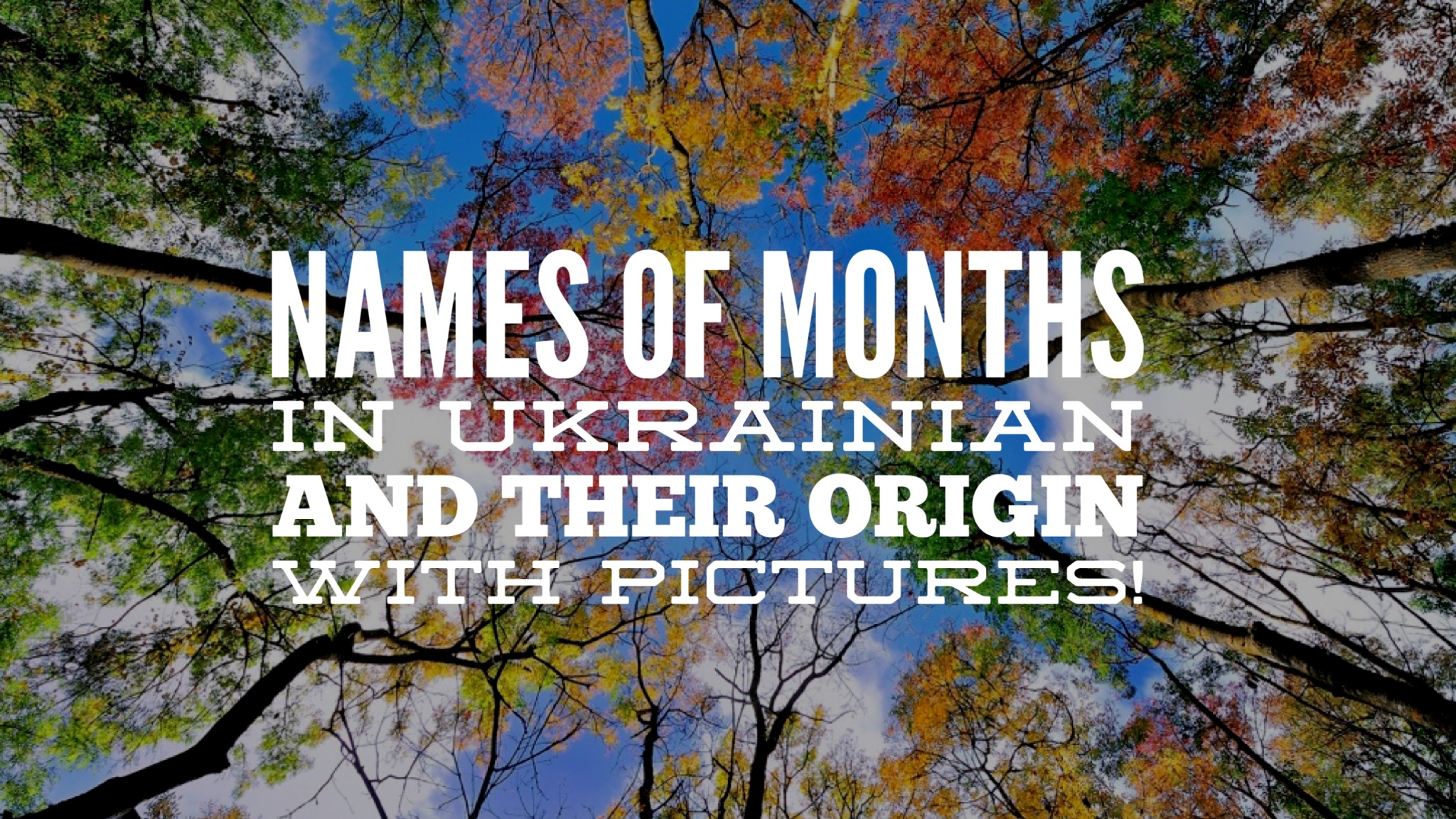 The name of months in the Ukrainian language from January to December 94